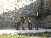 2008 - CACIS. Calders (1)