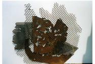 2000 - Primer roseto (50x54x10)
